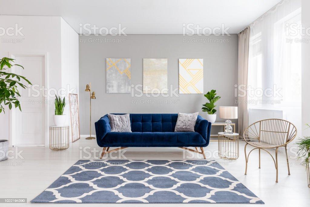 Echtes Foto Von Hellen Wohnzimmer Interieur Mit Royal Blaue Couch