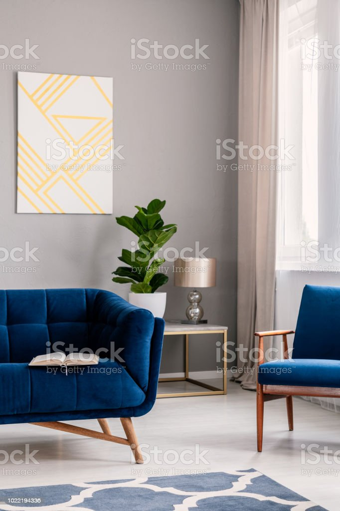 Real Photo Of Light Grey Living Room Interior With Fresh Plant Window With Drapes Geometric Painting And Open Book Placed On Dark Blue Sofa Stock Photo Download Image Now Istock