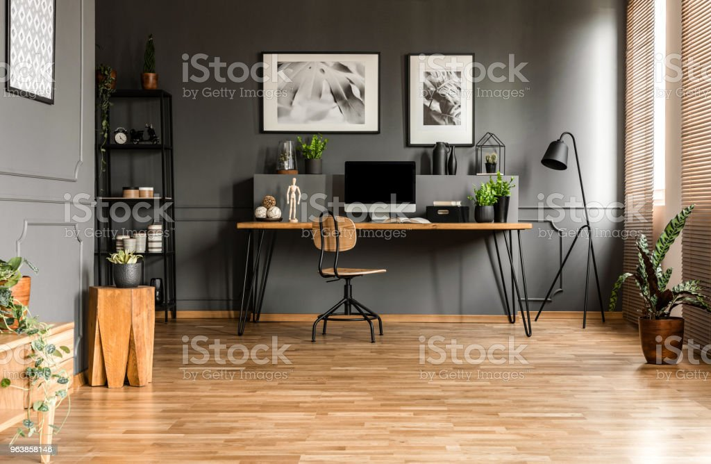 Real photo of spacious start-up office interior with a single chair at a wooden desk with computer and plants standing against black wall with molding - Royalty-free Apartment Stock Photo