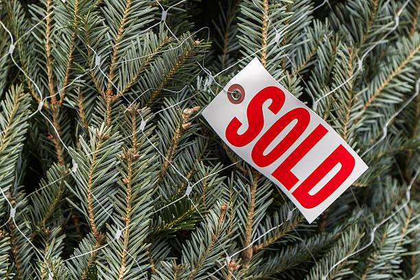 Real pine Weihnachtsbaum-Package in Netzgewebe mit Verkauf-label – Foto