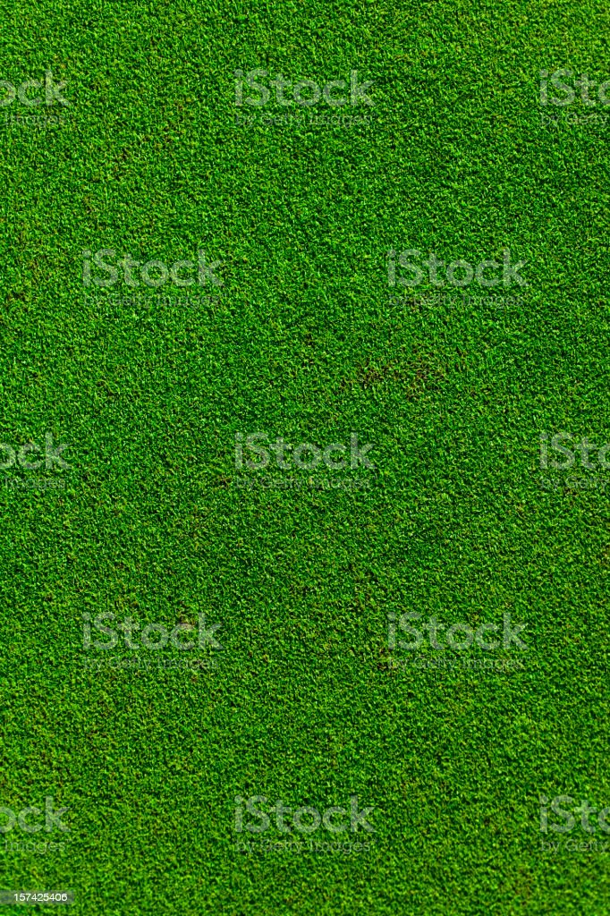 A real putting green of a golf course stock photo
