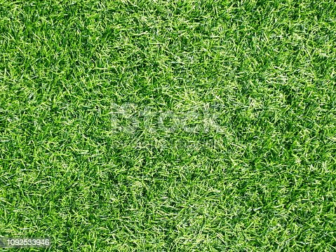 474672896 istock photo Real Putting Green 1092533946