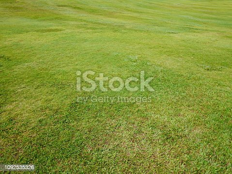 474672896 istock photo Real Putting Green 1092535326