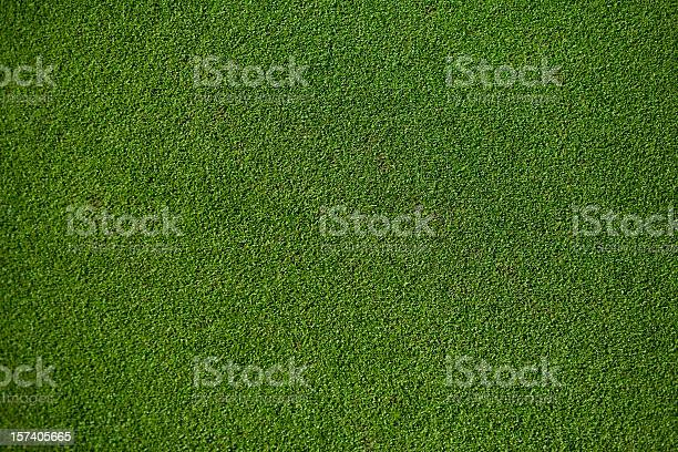 Real putting green picture id157405665?b=1&k=6&m=157405665&s=612x612&h=bx xrktgcjsngv5y104bl9u gxv 4hsphpkeoj34dqy=