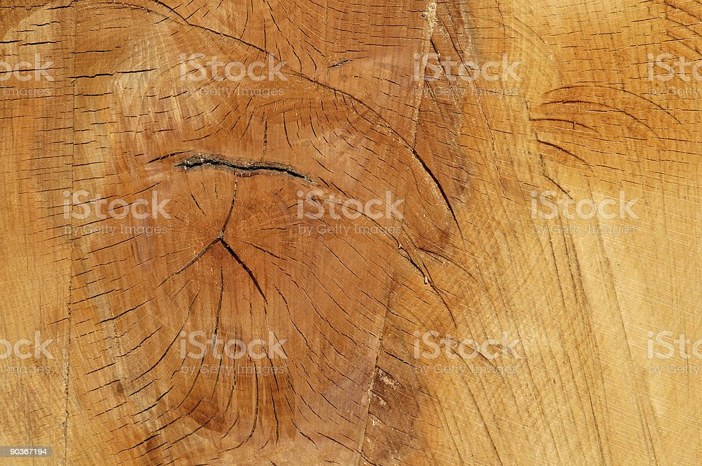 Real rough wood structure royalty-free stock photo