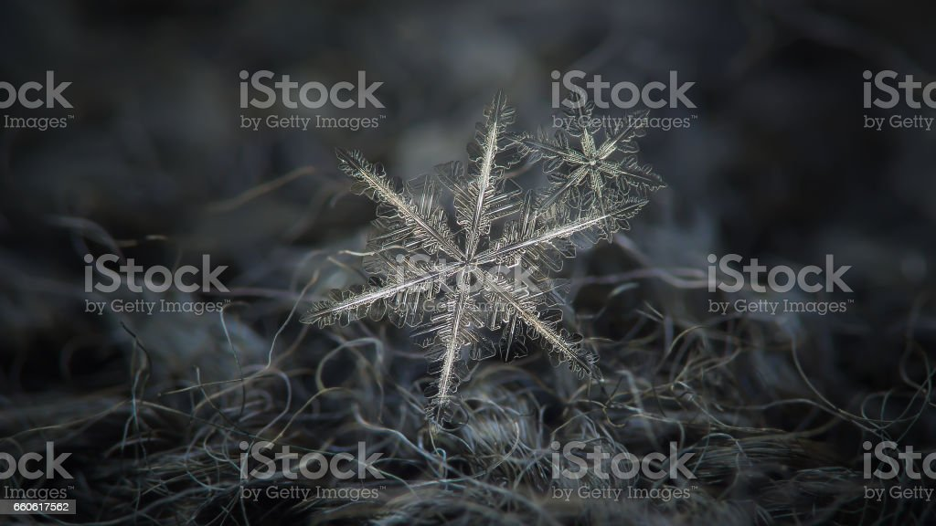 Real snowflake glowing on dark gray wool background royalty-free stock photo