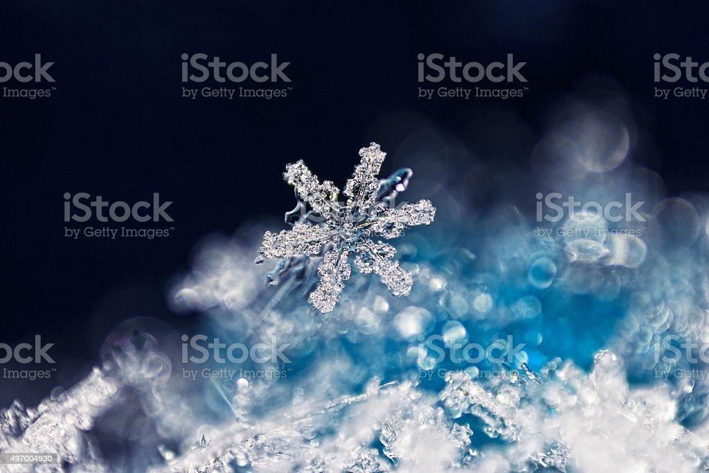 Real snowflake macro stock photo