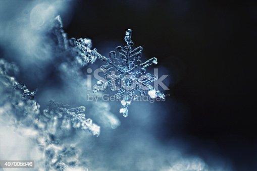 istock Real snowflake macro 497005546