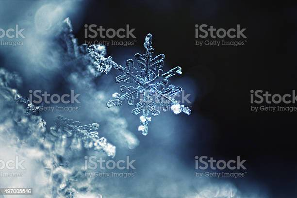 Photo of Real snowflake macro