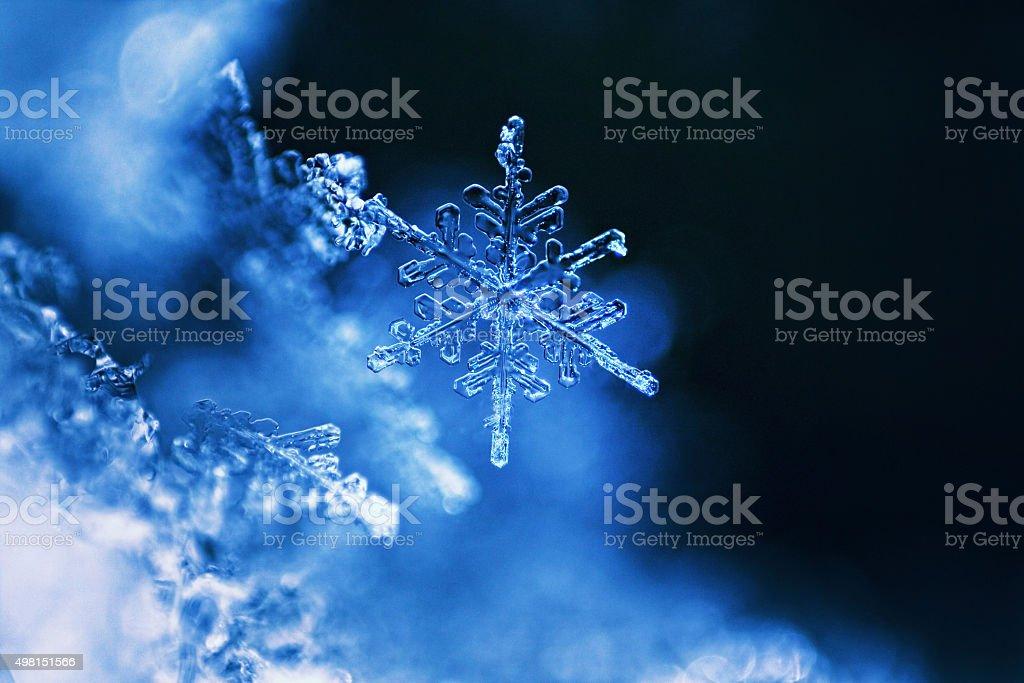Real snowflake macro - ultra shallow depht of field stock photo