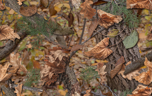 Realistic camouflage seamless pattern. Hunting camo for cloth, weapons or vechicles. Autumn camouflage of fallen leaves