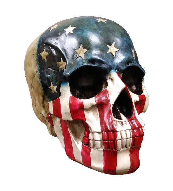 Realistic skull painted red white and blue stock photo