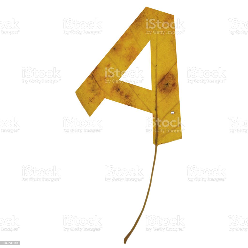Realistic yellow autumn leaf alphabet uppercase letter a with embedded selection clipping path isolated on white compositing stock photo