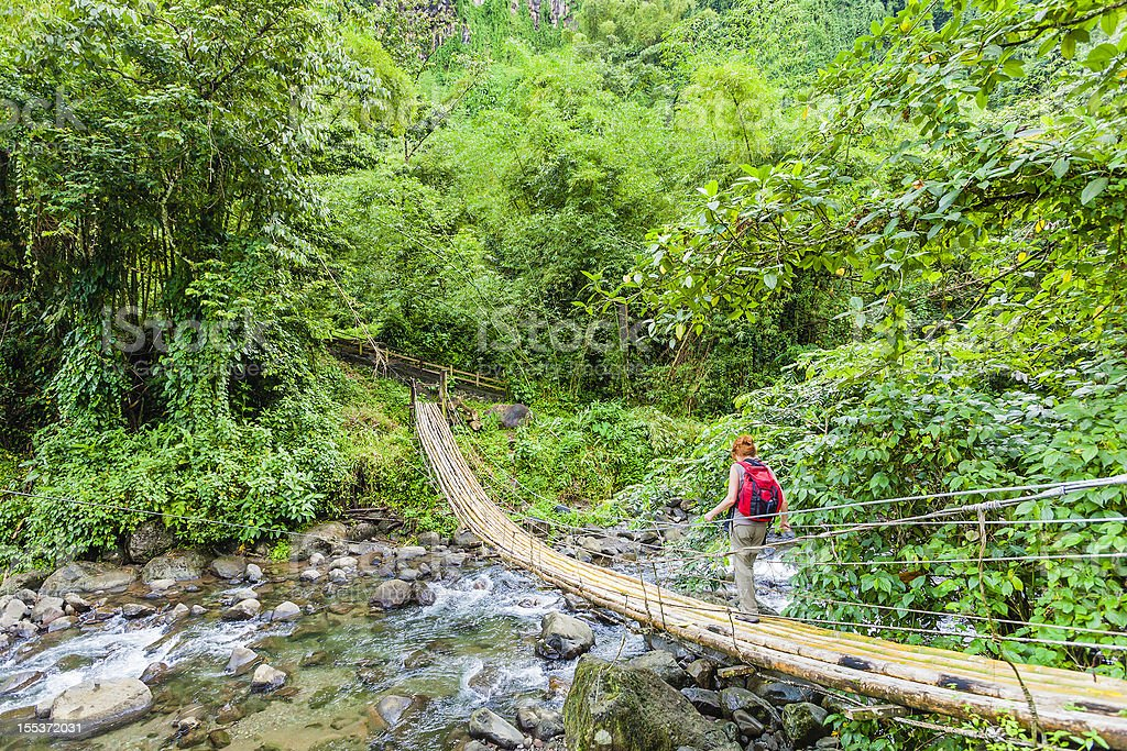 Really awesome bamboo bridge in St Vincent stock photo