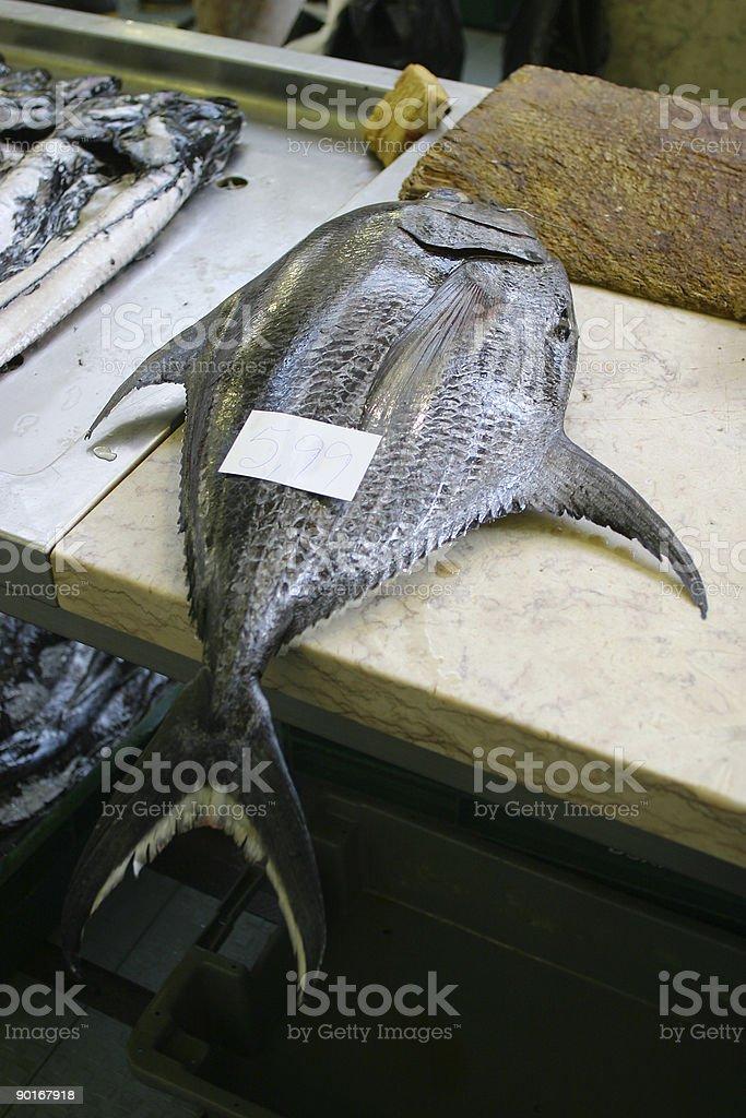 Really Fresh Tuna royalty-free stock photo