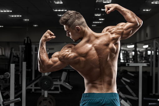 Sexy Muscular Man In Gym Shaped Abdominal Strong Male