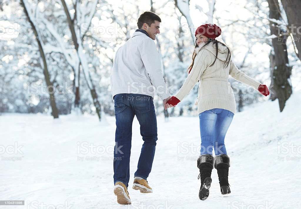 Rear view of a couple walking on winter day. royalty-free stock photo