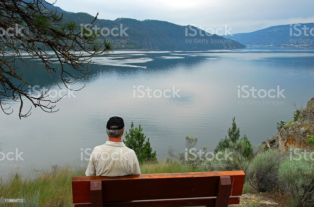 Rear view of a man siting near the lake royalty-free stock photo