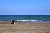 Rear view of a seated man, contemplating the horizon, Al Qurum Beach, Muscat, Oman