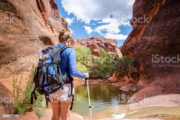 Achteraanzicht Van Een Vrouw Wandelen Naar Een Waterval In Een Red Rock Canyon Stockfoto en meer beelden van Achter