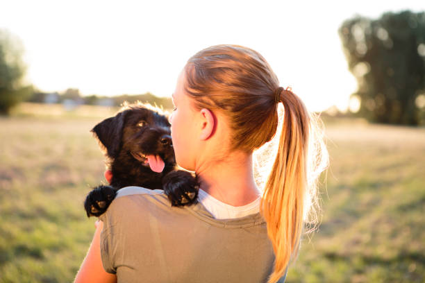 Rear view of a young woman hug her schnauzer puppy stock photo