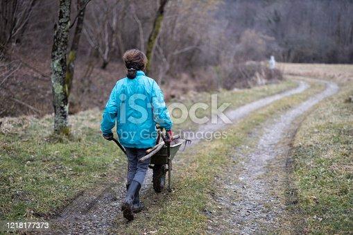 istock Rear View of Adult Woman Pushing Wheelbarrow on Dirt Road in Rural Scene 1218177373