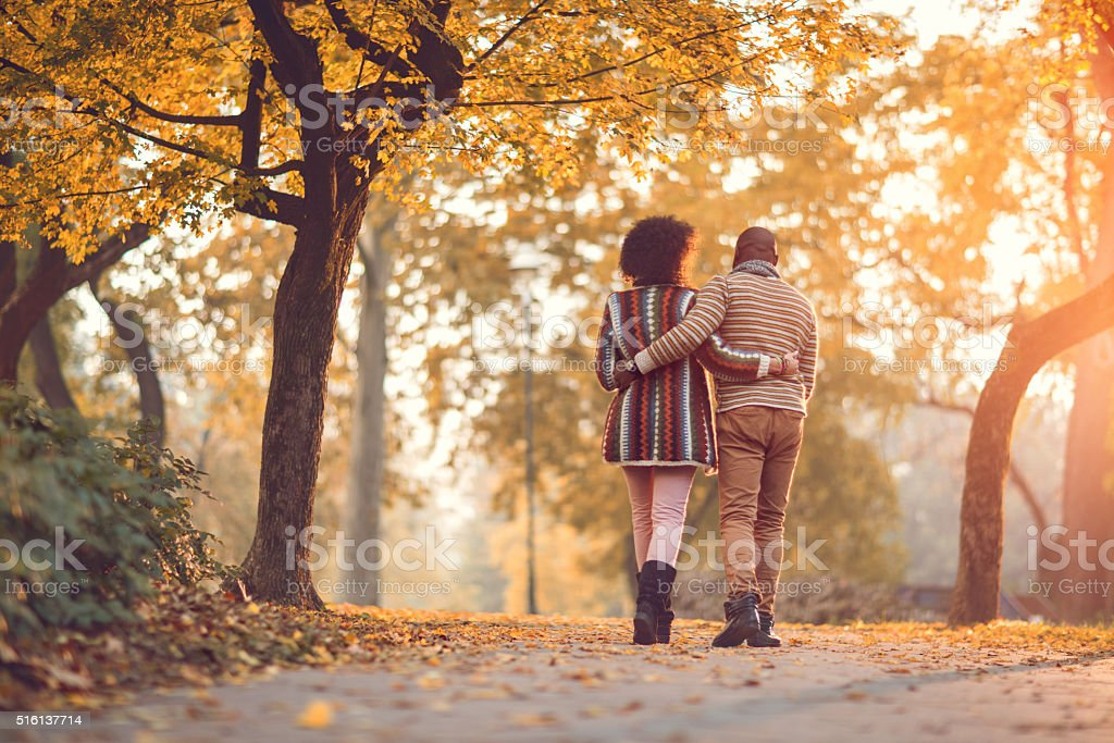 Rear view of African American couple walking in autumn park. stock photo