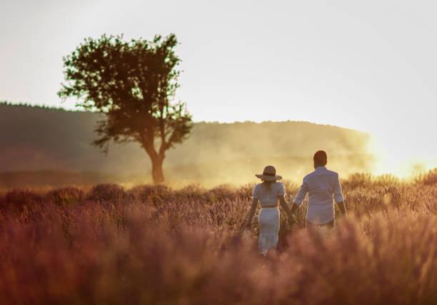 bakifrån av vackra par går i ett lavendelfält - lavender engraving bildbanksfoton och bilder