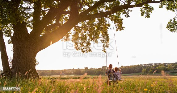 Rear view of brothers sitting on rope swing. Boys are in casuals on field. They are enjoying in park.