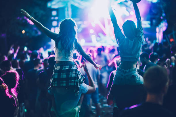 Rear view of carefree people having fun on music concert. stock photo