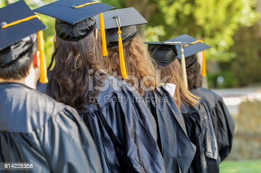 istock Rear view of  college students during graduation ceremony 614225358