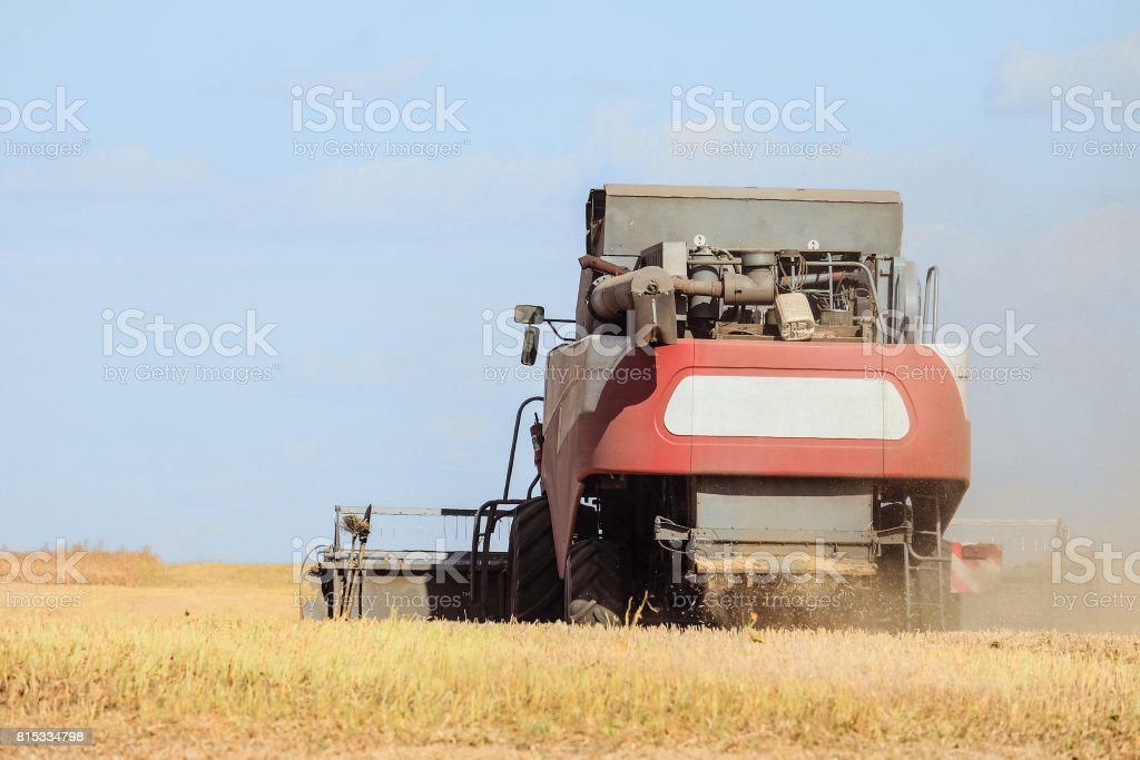 Rear view of combine harvester are working in the field. Agricultural machinery. stock photo