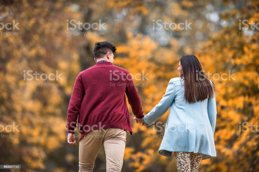 Rear view of couple in love walking through the park. stock photo