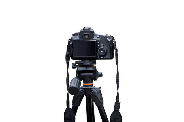 Rear View of Digital Camera stock photo
