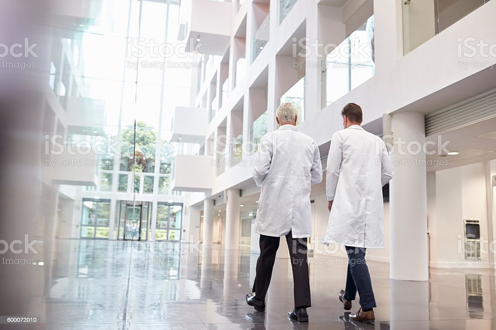 Rear View Of Doctors Talking As They Walk Through Hospital stock photo