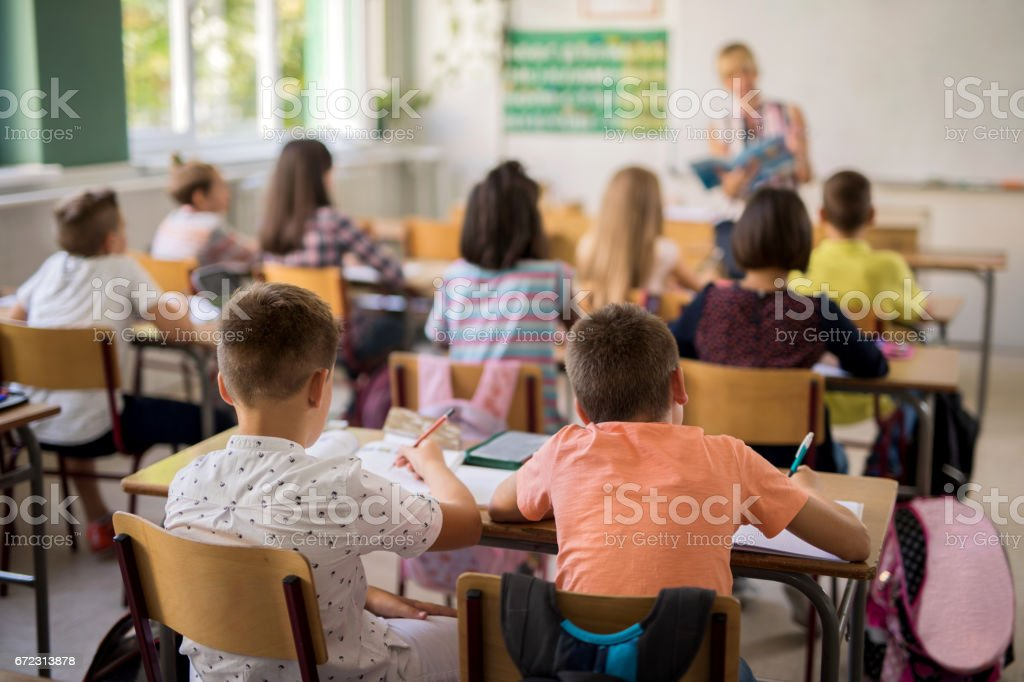 Rear view of elementary students in classroom during the lecture. stock photo