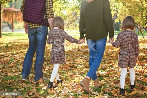 658444674istockphoto Rear view of family walking in autumn forest 1186075319