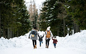 Rear view of family with two small children holding hands in winter nature, walking in the snow.