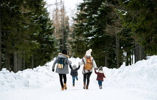 Rear view of family with two small children in winter nature, walking in the snow. stock photo