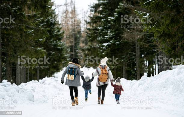 Photo of Rear view of family with two small children in winter nature, walking in the snow.
