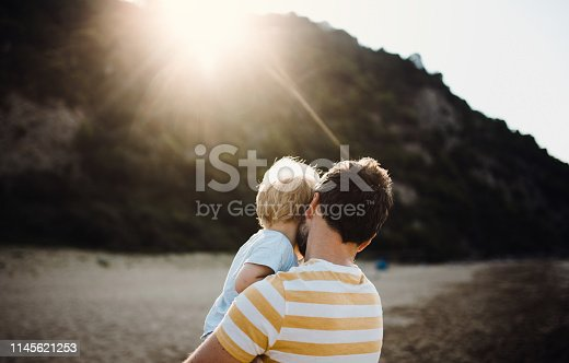 A rear view of father with a toddler boy on beach on summer holiday at sunset.