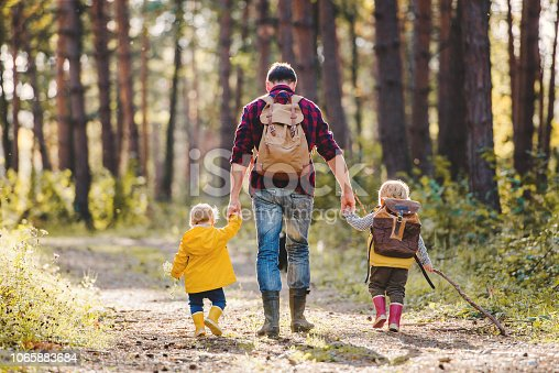 A rear view of father with toddler children walking in an autumn forest, holding hands.