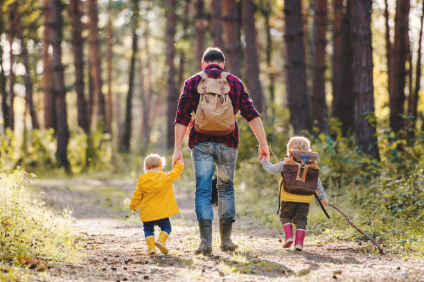 A rear view of father with toddler children walking in an autumn forest. stock photo