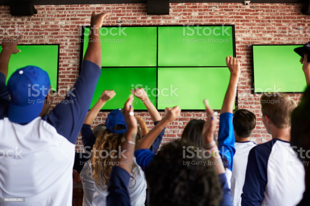 Rear View Of Friends Watching Game In Sports Bar Celebrating stock photo