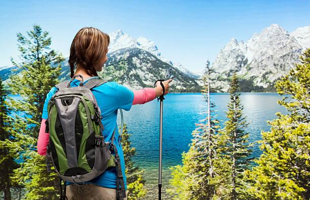 rückansicht des hiker in der wildnis - own wilson stock-fotos und bilder