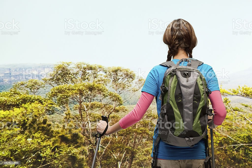 Rear view of hiker looking at nature stock photo