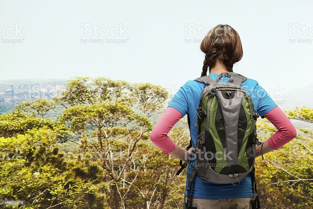 Rear view of hiker looking away stock photo