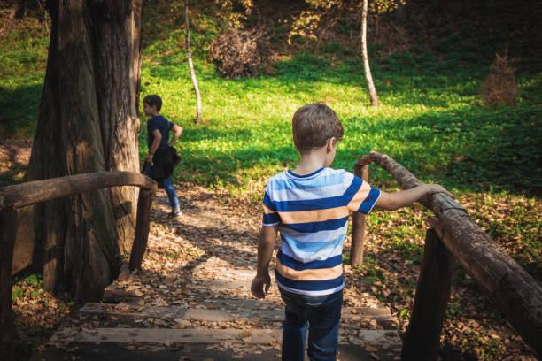 Rear view of kids crossing over wooden bridge in nature.