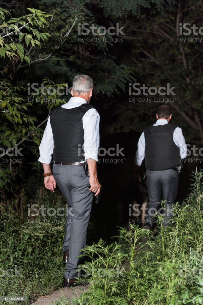 rear view of male police officers in bulletproof vests with german shepherd on leash outdoors stock photo