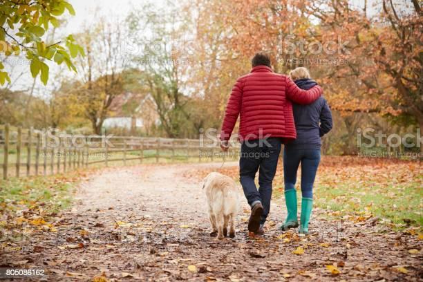 Rear view of mature couple on autumn walk with labrador picture id805086162?b=1&k=6&m=805086162&s=612x612&h=stfx xqmuatbzql5t8xplitafs98vu9flqflarhtm1c=